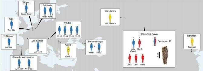 mapa homos prehistoria