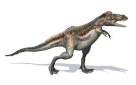 Alioramus dinosaurio