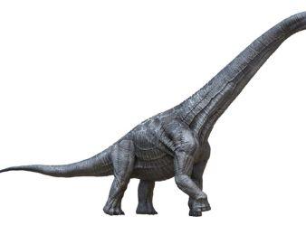 dinosaurio alamosaurus