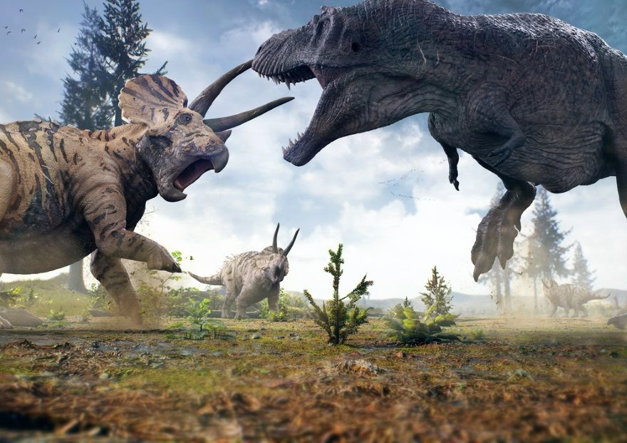 triceratops lucha tiranosaurio