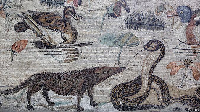 mangosta epoca romana