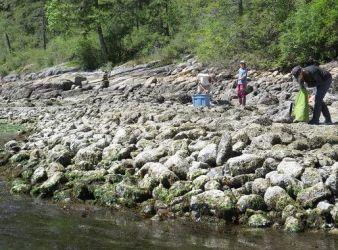maricultura en america del norte