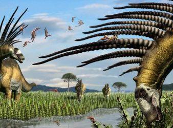 Bajadasaurus pronuspinax dinosaurio argentina