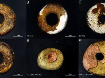 imitaciones de ambar prehistorico