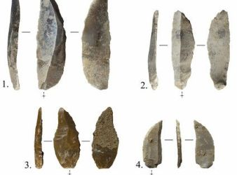restos prehistoricos cueva foradada