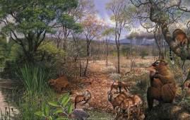 evolucion mamiferos norteamerica