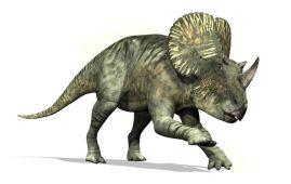 Brachyceratops dinosaurio