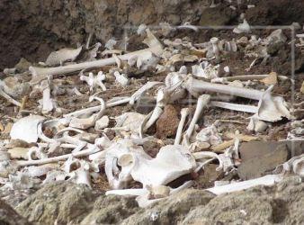 cueva funeraria canarias