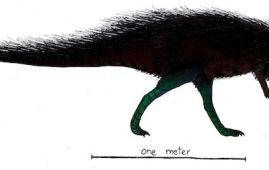 Callovosaurus dinosaurio