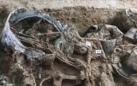 tumba principe prerromano italia