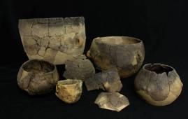 consumo de leche neolitico