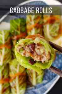 cabbage wrapped pork dumplings