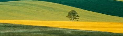 """Rete Turistica Rurale e ricordi """"gallici"""""""