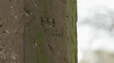 AA close up of ancient graffiti on the preaching cross dated 1798
