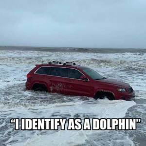 The RedJeepDorian - Identify As A Dolphin Meme