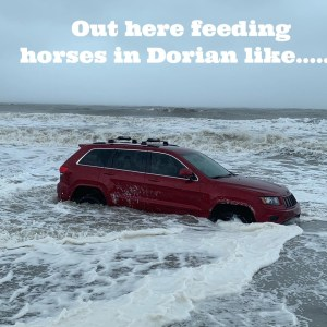 The RedJeepDorian – Out Here Feeding Horses in Dorian Like Meme