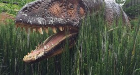 dinosaur, free, garden, jurassic