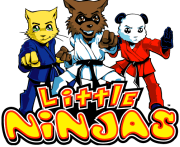 little ninjas, martial arts, preschool, class