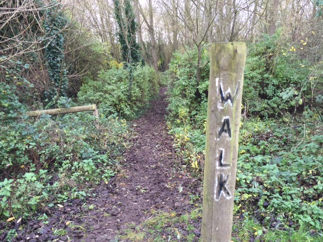 bure park, bicester, walk, nature, outdoors, kids