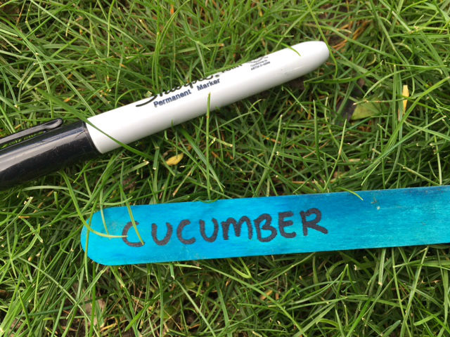 lollipop stick seed markers, garden seed markers homemade, diy seed labels, kids garden craft, recycled garden craft, popsicle stick seed markers