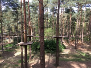 go ape bracknell review, go ape review, review go ape bracknell, tree top activity for kids, things to do with kids in bracknell, go ape berkshire