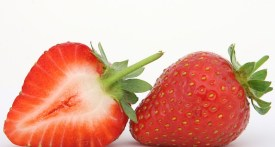 pick your own berkshire, strawberry picking berkshire, pick your own farms berkshire