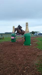 thame show 2018, thame horse show 2018, thame country fair 2018, whats on Thame
