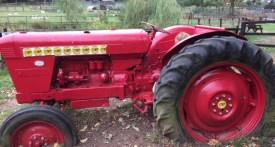 thrift farm, milton keynes farm park