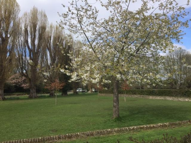 florence park oxford, florence park cowley