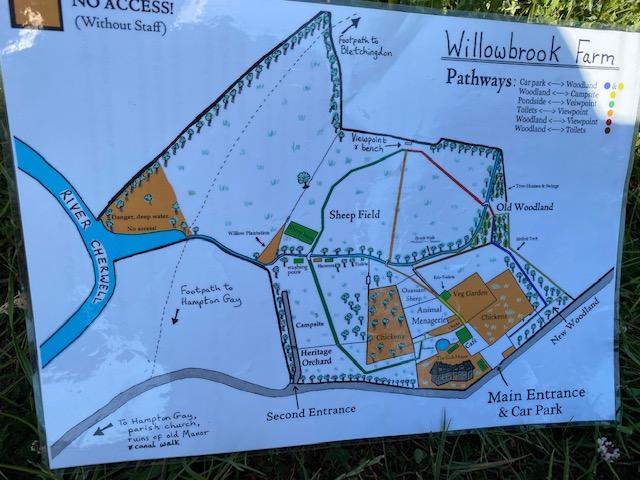 woodland walks Oxfordshire, where to go on a family walk Oxfordshire
