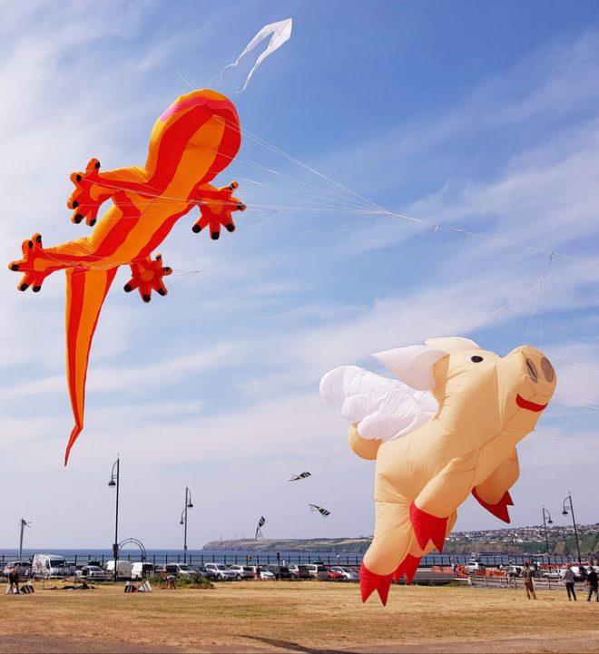 balloon festival midlands, kite show warwickshire