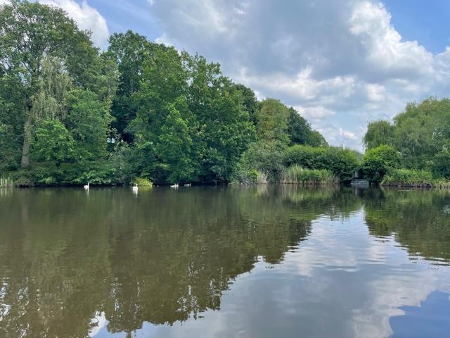 mill pond, mill pond bracknell, mill park pond bracknell
