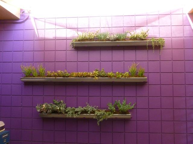 Wall Garden 5