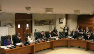 Pam Spence, President of the Birkdale Progress Association, addresses Redland City Council - Photo: from video recording of the meeting