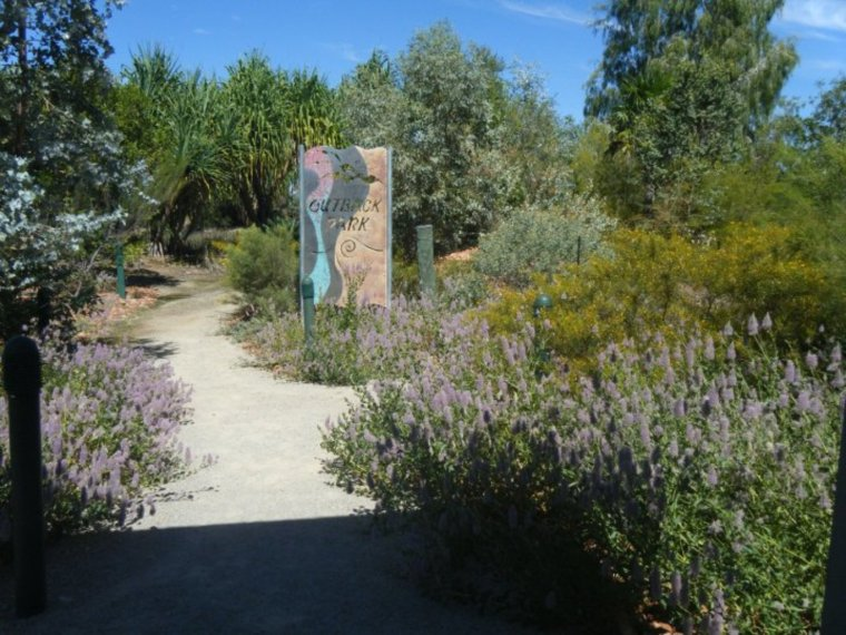 A bird-friendly garden. Karthryn Lambert, Author provided