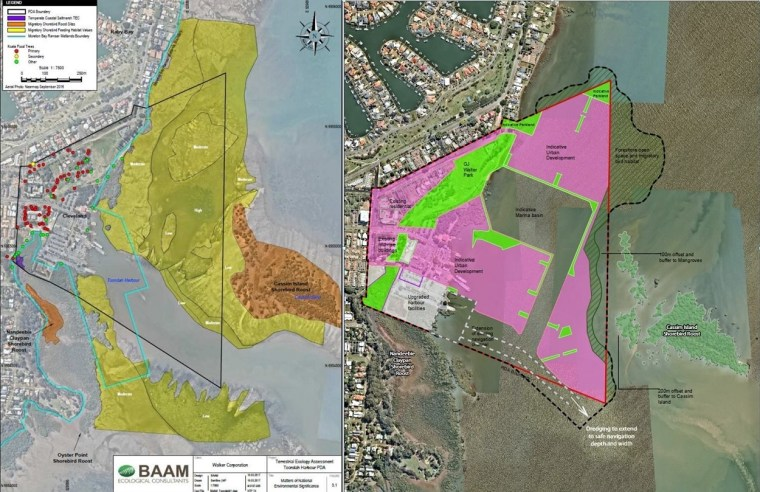 Plans to dredge and reclaim Ramsar wetlands next to Toondah Harbour conflict with Labor Party policies.p's p
