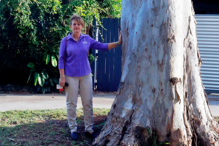 Deputy Mayor Wendy Boglary - concerned about vandalism to a koala tree in O'Connell Parade, Wellington Point