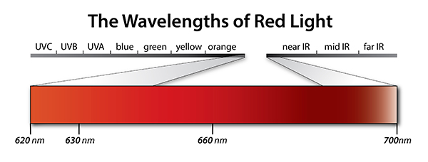 The Wavelengths of Red Light Therapy