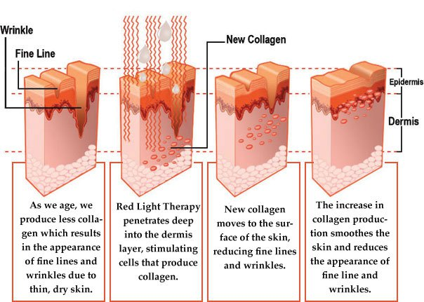 Anti ageing Red Light Therapy infografic