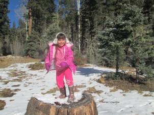 Elf on a Tree Stump