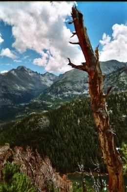 Trial Run up to Hallot Peak in RMNP