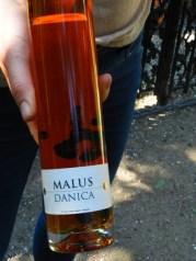 58-malus danica-hard cider..