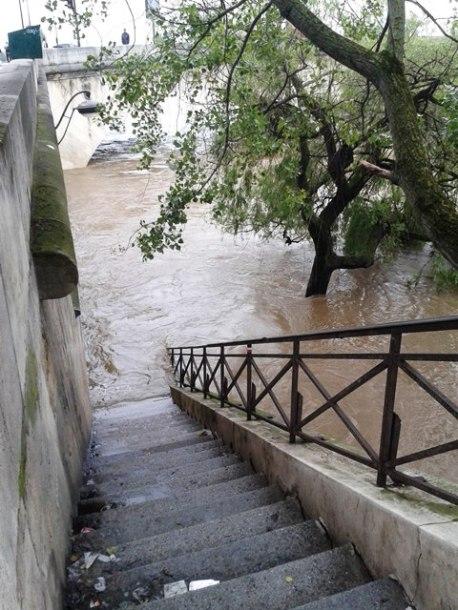 6-flood