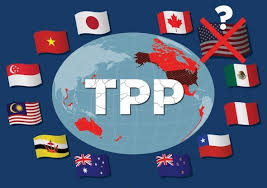 How will they vote on TPP?