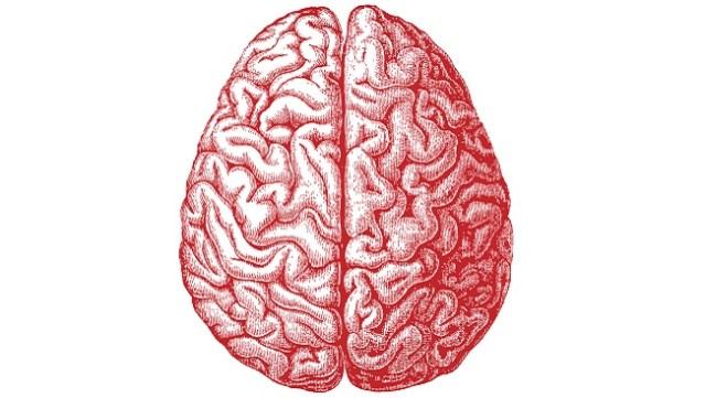 Ego brains