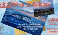 Meditación-concierto de Las Ballenas al aire libre (Vigo)