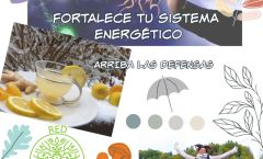 Fortalece tu sistema energético para el otoño