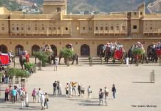 Amber Fort Jaipur (5)