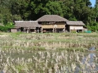 karen-village-5