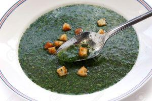 14052931-molokhia-soup-egyptian-spinach-soup-stock-photo
